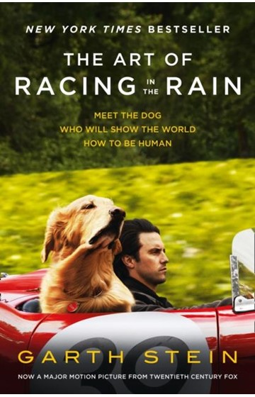 THE ART OF RACING IN THE RAIN FILM TIE-IN PB